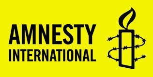 Amnesti internesenel