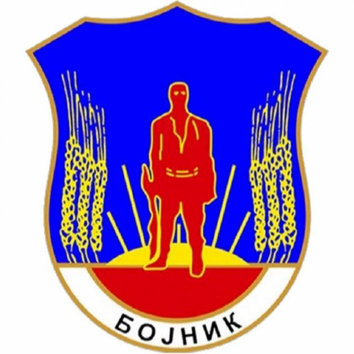 Bojnik